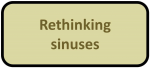 Rethinking sinuses